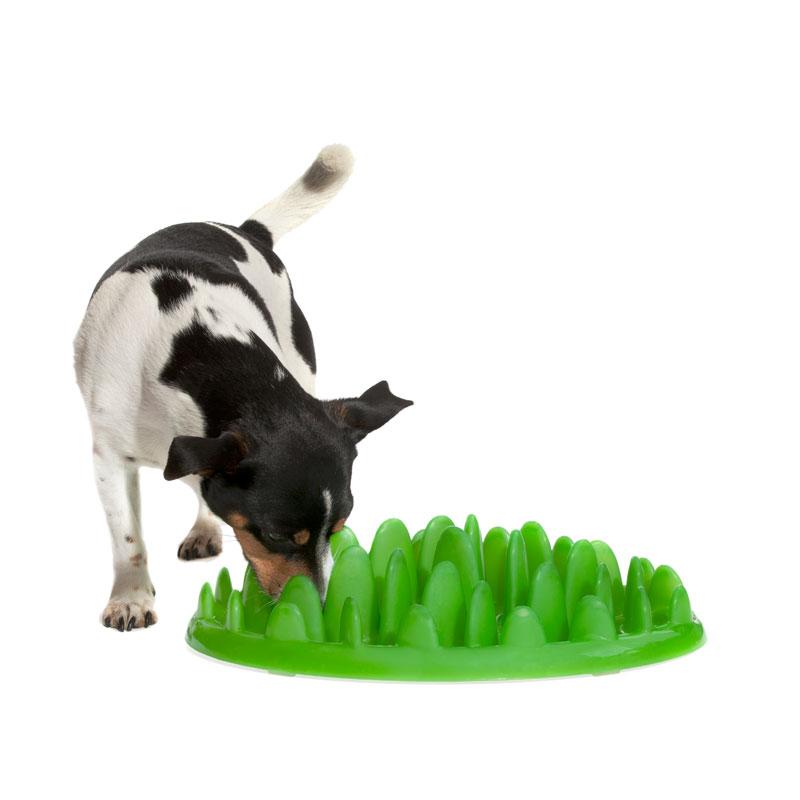 Кормушки для собак 176